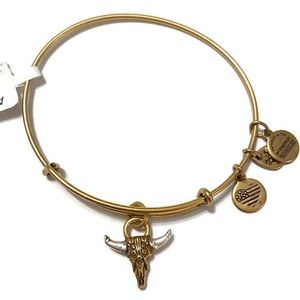 Alex and Ani Spirited Skull Bracelet